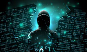 How do I remove my information from the dark web? We provide answers